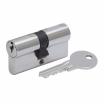 Basi AS Profilzylinder vern. Länge 45/45 VS